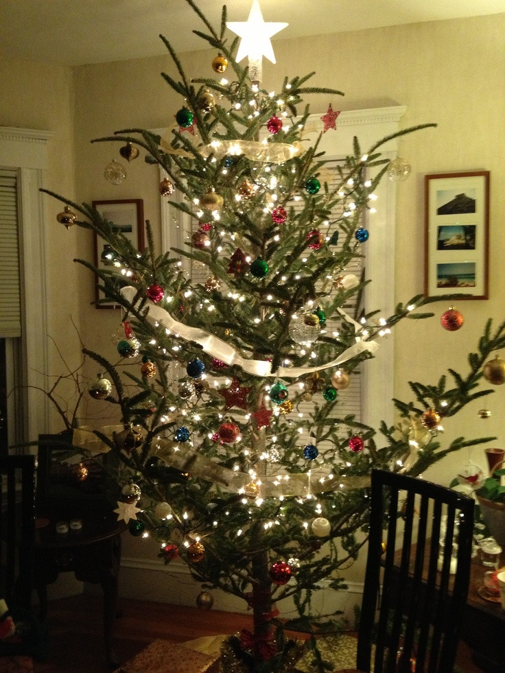 Old Fashioned Christmas Tree Elegant 60 Best Images About Old Fashioned Christmas On Pinterest Of Amazing 43 Photos Old Fashioned Christmas Tree