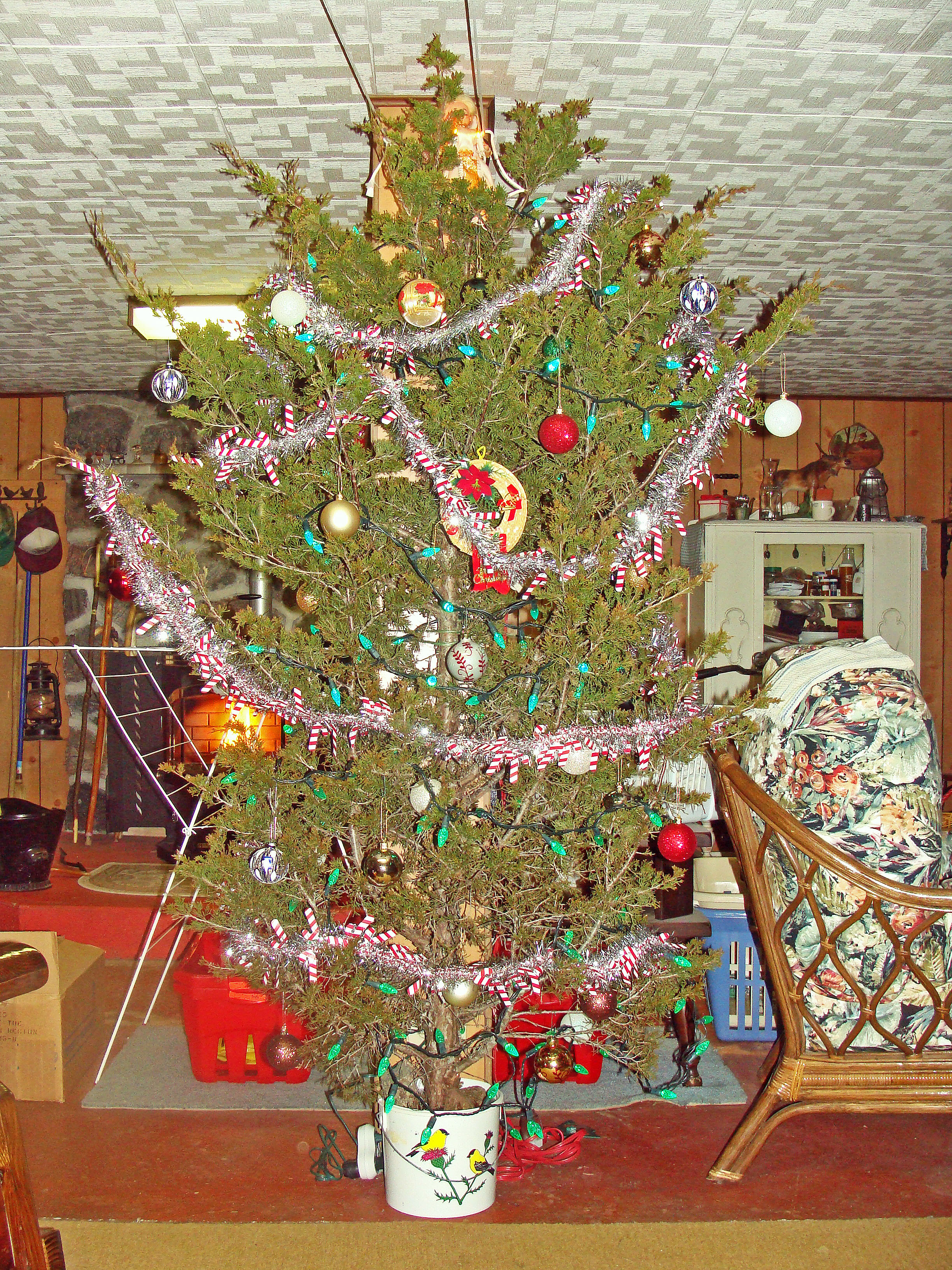 Old Fashioned Christmas Tree Inspirational Dreaming Of An Old Fashioned Christmas Prince Edward Of Amazing 43 Photos Old Fashioned Christmas Tree