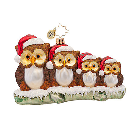 Owl Christmas ornaments Beautiful Christopher Radko ornaments 2016 Of Contemporary 45 Pictures Owl Christmas ornaments