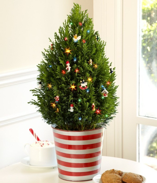 Small Decorated Christmas Trees Lovely Pot Christmas Tree is Beautiful Decoration for Home and Of Charming 48 Models Small Decorated Christmas Trees
