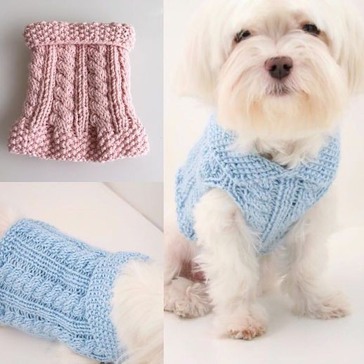 Small Dog Clothes Patterns Best Of Dog Diy Knitting Cute Little Dog Sweaters for Charity Of Contemporary 43 Ideas Small Dog Clothes Patterns