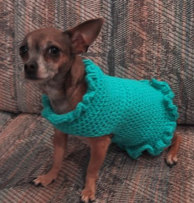 easy crochet dog sweater pattern for small dogs