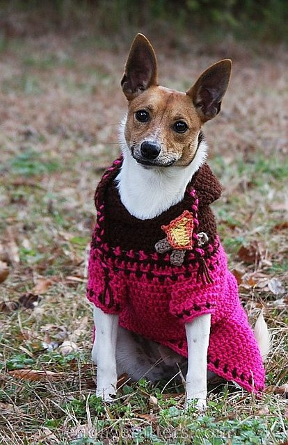 Unique 2016 In Crochet Crochet Patterns Free Crochet Pattern for Small Dog Sweater Of Adorable 48 Images Free Crochet Pattern for Small Dog Sweater