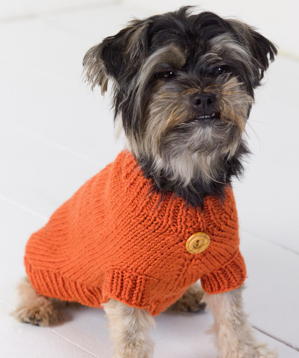 Unique Dog Sweater Knitting Pattern Knitting Patterns for Dog Sweaters for Beginners Of Luxury 41 Pictures Knitting Patterns for Dog Sweaters for Beginners