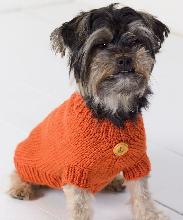 Unique Life is Ruff Knit Dog Sweater Free Knitting Pattern for Dog Sweater Of Amazing 49 Photos Free Knitting Pattern for Dog Sweater